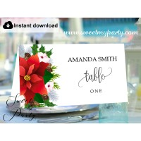 Winter Wedding Escort Cards template printable,Christmas Place Cards template,(154)
