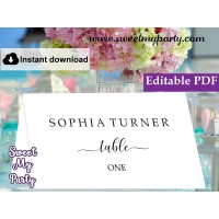 Calligraphy Escort Cards template,Modern Calligraphy Place Cards template, (51)