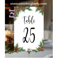 Pine Cone Table numbers,Winter wedding table numbers,(119w)